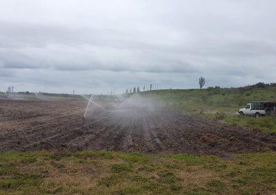 KZN First Planting