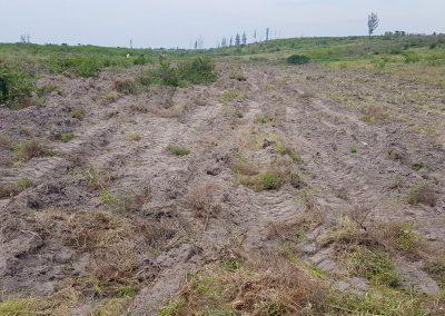 KZN land Prep