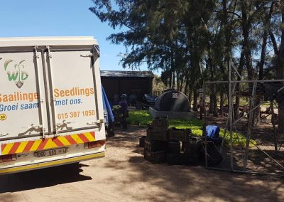 KZN plant delivered